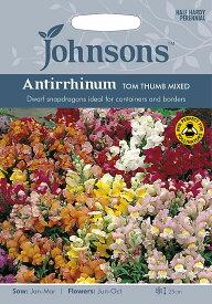 【輸入種子】Johnsons SeedsAntirrhinum Tom Thumb Mixedアンチヒナム(金魚草) トム・サム・ミックスジョンソンズシード