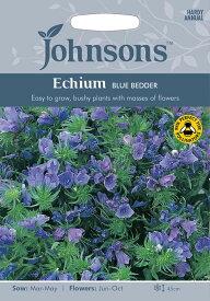 【輸入種子】Johnsons Seeds Echium Blue Bedder エキウム・ブルー・ベッダー ジョンソンズシード
