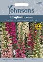 【輸入種子】Johnsons SeedsFoxglove Digitalis Foxy Mixedフォックスグローブ(ジギタリス)・フォクシー・ミックス…