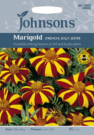 【輸入種子】Johnsons SeedsMarigold (French) Jolly Jesterマリーゴールド(フレンチ)・ジョリー・ジェスタージョンソンズシード