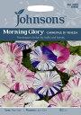 【輸入種子】Johnsons Seeds Morning Glory Carnevale di Venezia モーニング・グローリー(西洋朝顔) カーニバル・デ…