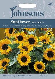 【輸入種子】Johnsons SeedsSunflower Baby Face F1サンフラワー・ベビー・フェイス・F1ジョンソンズシード
