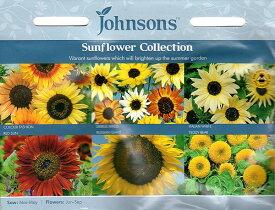 【輸入種子】Johnsons SeedsSunflower collction サンフラワー・コレクションジョンソンズシード