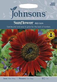 【輸入種子】Johnsons Seeds Sunflower Red Sun サンフラワー レッド・サン ジョンソンズシード
