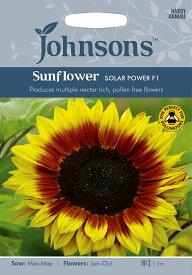 【輸入種子】Johnsons SeedsSunflower Solar Power F1サンフラワー ソーラー・パワー・F1ジョンソンズシード