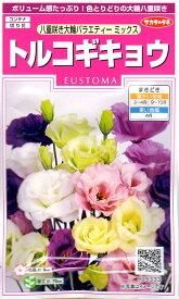 【種子】トルコギキョウ(ユーストマ) 八重咲き大輪バラエティーミックス サカタのタネ