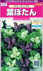 【種子】葉ぼたん バニーミックスサカタのタネ