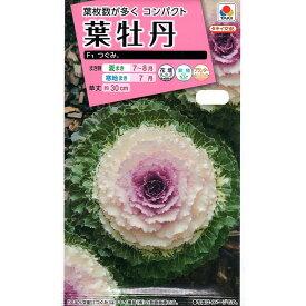 【種子】葉牡丹 F1つぐみタキイ種苗のタネ