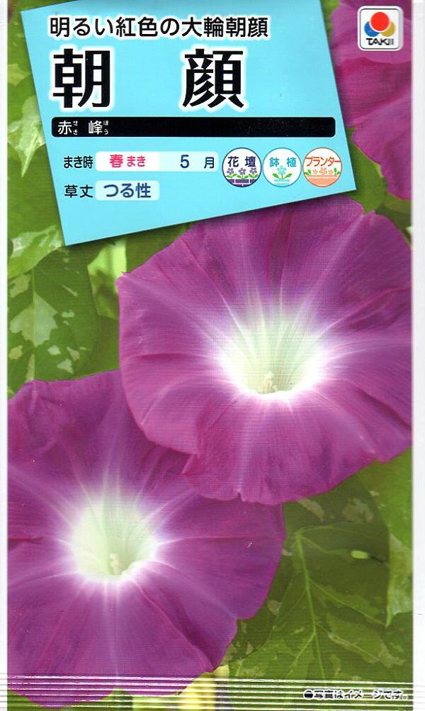 【種子】朝顔 赤峰タキイのタネ