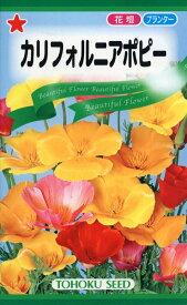 【種子】カリフォルニアポピートーホクのタネ