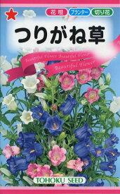 【種子】つりがね草(カンパニュラ メジューム)トーホクのタネ