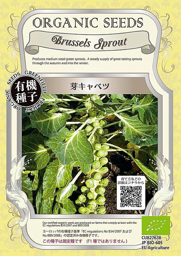 【有機種子】芽キャベツグリーンフィールドプロジェクトのタネ