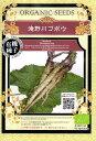 【有機種子】滝野川ゴボウ グリーンフィールドプロジェクトのタネ