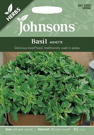 【輸入種子】Johnsons Seeds HERBS Basil Minette ハーブ バジル・ミネッティ ジョンソンズシード