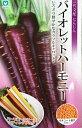 【種子】一代交配にんじんバイオレットハーモニー丸種のタネ