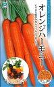 【種子】一代交配にんじんオレンジハーモニー丸種のタネ