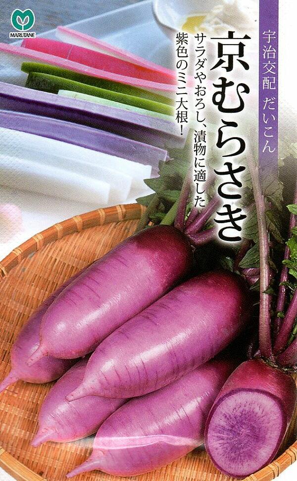 【種子】京むらさき だいこん丸種