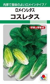 【種子】ロメインレタスコスレタスタキイ種苗のタネ
