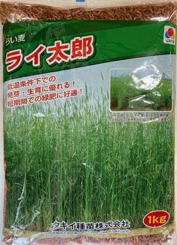 【種子】超極早生らい麦 ライ太郎お徳用 1kg入り大袋タキイのタネ
