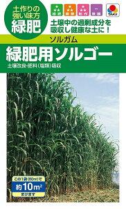 【種子】ソルガム 緑肥用ソルゴー(60ml)タキイ種苗のタネ