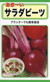 【種子】あま〜いサラダビーツトーホクのタネ