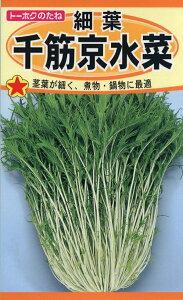 【種子】細葉 千筋京水菜トーホクのタネ