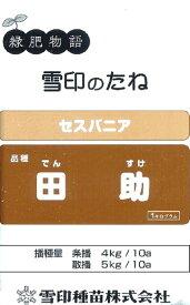 【種子】セスバニア 田助(根粒菌入り) 1kg 雪印種苗のタネ