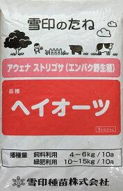 【種子】アウェナ ストリゴサ(エンバク野生種)緑肥用エンバク(えん麦) ヘイオーツ 1kg 雪印種苗のタネ