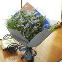 ≪送料&クール便代金込み≫たっぷりリンドウのふんわり花束