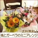 桃とガーベラのおひな祭りミニ・アレンジメント(お届け可能期間:2月16日〜3月3日)