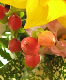 【送料無料!】ヒマワリのミニ・アレンジメント(花かご)★お届けは9月10日まで★ひまわり誕生日フラワーギフト花誕生祝いフラワーアンセリウムギフトお中元暑中お見舞い残暑見舞い