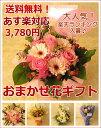 ≪送料無料!≫おまかせ花ギフト☆3,780円コース お花の色合いやご用途をお選び下さい!誕生日 お祝い お見舞い 開店祝い 御祝 バラ …