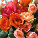 バラ 還暦祝い 花束 プレゼント 花 誕生日 ギフト 還暦 お祝い 赤バラ 黄バラ ピンクバラ 花束 フラワーギフト≪送料無料!≫豪華なバ…