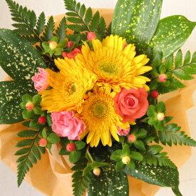 ≪送料無料!≫アイビーベリーのお試しアレンジ♪フラワー ギフト 誕生日 お祝い バラ カーネーション ガーベラ 花束 花 かご お誕生日祝い フラワーギフト
