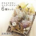 【送料無料】ドライフラワー ミニブーケ 6種セット 【夏 お花 花 花束 かすみ草 ブーケ ミニブーケ 贈り物 …