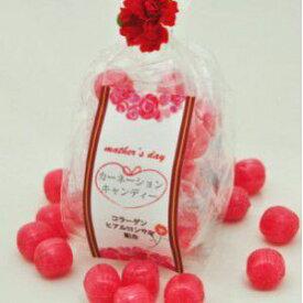 母の日 ギフト カーネーションキャンディー☆レビュー書き込みで次回あめプレゼント