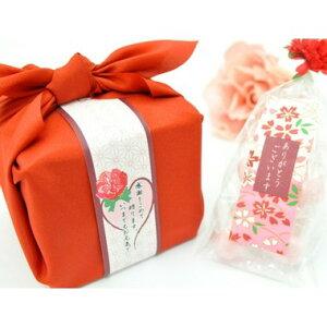 【楽ギフ_包装】母の日ギフト 飴の素キャンディーセット【送料無料】☆レビュー書き込みで次回あめプレゼント