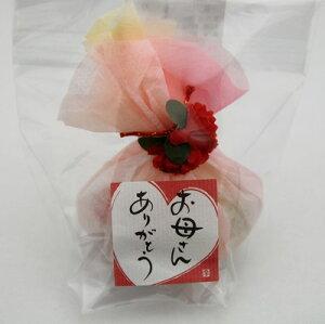 母の日 プレゼント まとめ買い 京ひらり 2ケース(60個)カーネーション お母さんありがとう プチギフト/イベント/ノベルティ
