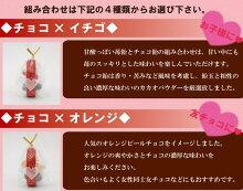 チョコ・イチゴ飴/チョコ・オレンジ飴