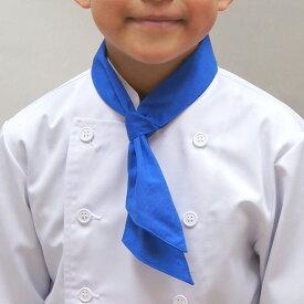 子供用カラースカーフ 赤 レッド 青 ブルー 黄 イエロー スカーフ タイ 児童用 白衣