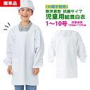 【ネコポス可】給食白衣 割烹着型 抗菌シリーズ 給食エプロン かっぽう着 白 学校給食 エプロン 給食 白衣 給食衣 ホ…