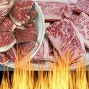 国産牛 三角バラとイチボ (モモ) 自家製タレ付属 800g BBQ バーベキュー 焼肉セット
