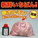 国産豚ホルモン ミックス 500g 自家製みそダレ付属 (焼肉 もつ鍋) 焼き肉 バーベキュー BBQ