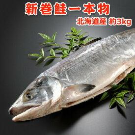 北海道産 新巻鮭一本物(秋鮭) 約3kg 送料無料 化粧箱入 送料無料