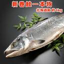 北海道産 新巻鮭一本物(秋鮭) 約4kg 送料無料 化粧箱入 送料無料