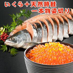 いくら+時鮭一本物姿切り 約2.3kg 送料無料 化粧箱入 お取り寄せグルメ