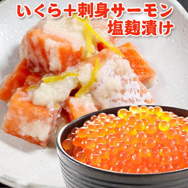 イクラ アラスカ産+サーモン塩麹漬け 送料無料・化粧箱入 イクラ醤油漬け サ-モン