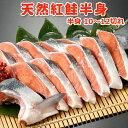 天然紅鮭【半身10〜12切】 送料無料・化粧箱入 クーポン利用で4,499円
