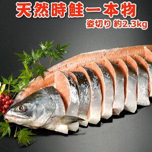 天然時鮭一本物 姿切り 約2.3kg 送料無料 化粧箱入 お取り寄せグルメ