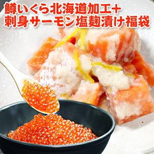 鱒いくら 500g+刺身サーモン塩麹漬け 250g 福袋 送料無料 ギフト 海鮮